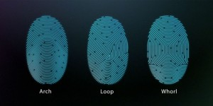 touchid_may_already_been_hacked_0-700x352