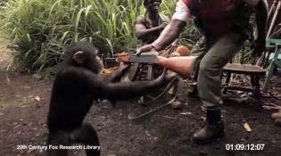 猿に銃をあたえたらとんでもないことに